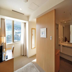 Standard Mountain View Single Room