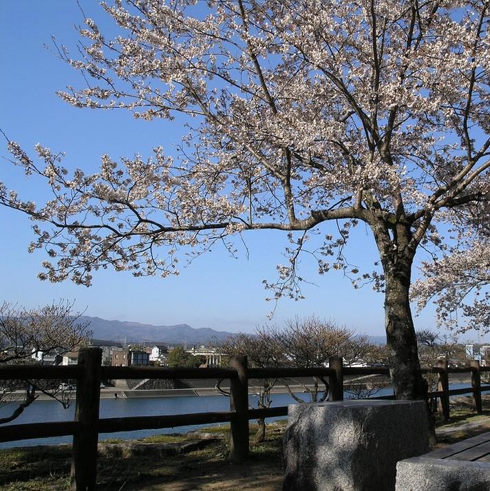 ONSEN(Hot Spring)!Spring Plan