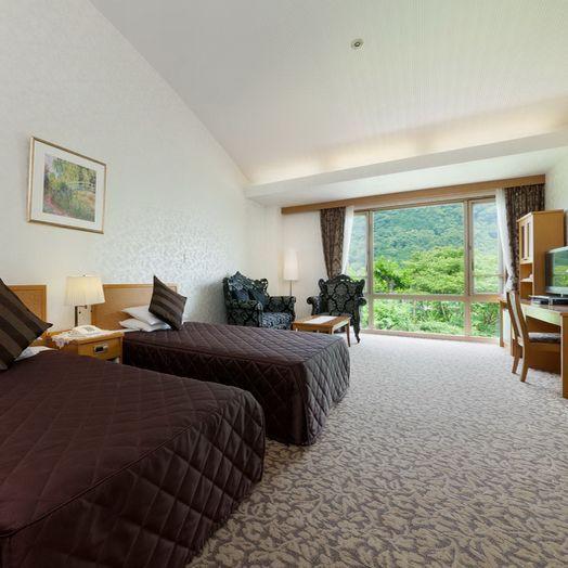 高級雙床間 46-50平方米