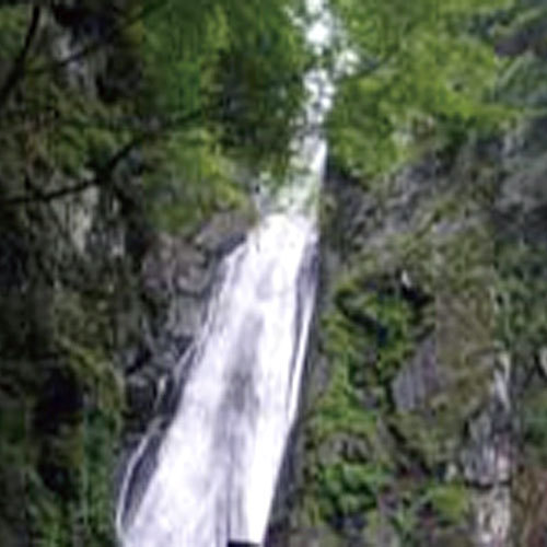 梅ケ島温泉 くつろぎの宿 梅の家旅館 関連画像 1枚目 楽天トラベル提供