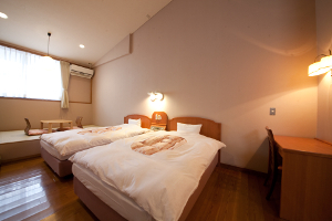 Deluxe Twin Room 21 to 25 Sq M