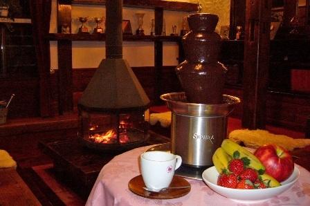 チョコレートを使ったフルーツフォンデュ