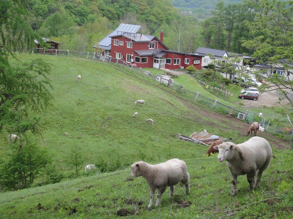 牧場からアニマの里の建物を望む