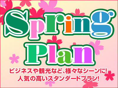 【オンライン決済限定】【素泊り】☆スプリングスタンダードプラン☆
