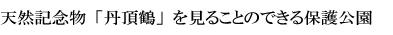 天然記念物「丹頂鶴」を見ることのできる保護公園