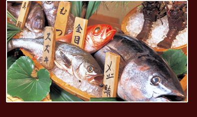 稲取港水揚げの新鮮な地魚