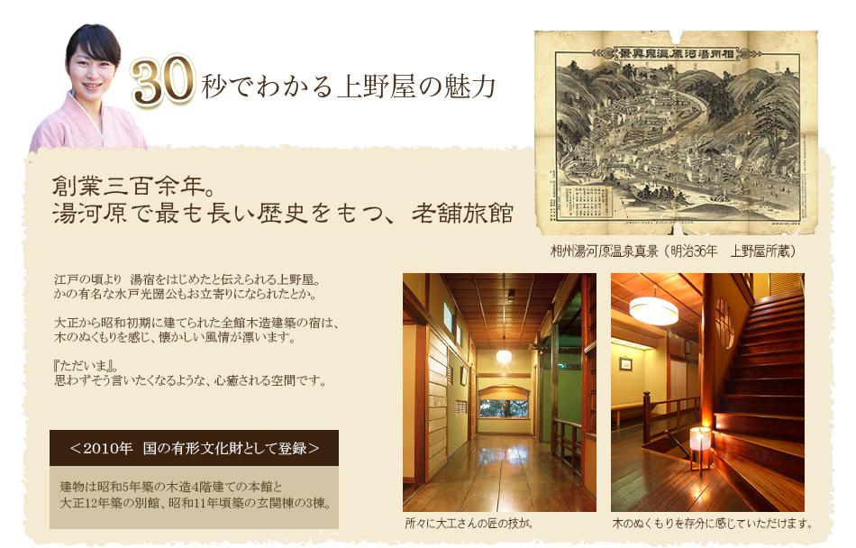 30秒でわかる上野屋の歴史