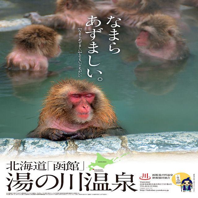 『2月〜3月限定!現金特価!超得』お勧め!!素泊りプラン