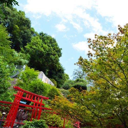 【素泊り】がっつり徳島を満喫したい方はコレ!大浴場で疲れを癒しちゃおう♪プラン<素泊まり>