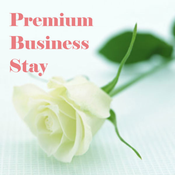 Hyatt Business Premium ~Room Charge Only~