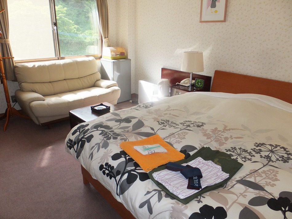East Wing Mountain View Double Room
