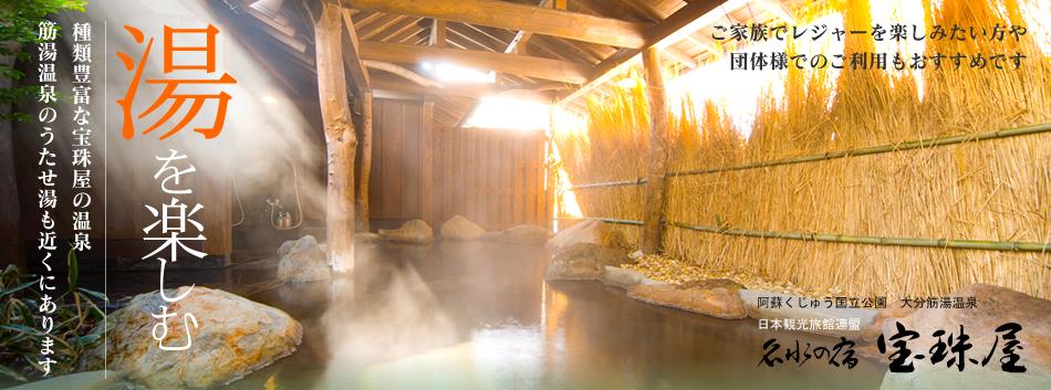 湯を楽しむ 種類豊富な宝珠屋の温泉、筋湯温泉のうたせ湯も近くにあります。名水の宿宝珠屋