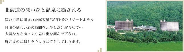 北海道の深い森と温泉に癒される