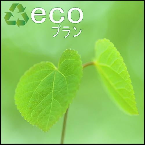 【連泊がお得】地球にも お財布にも優しい『エコプラン』♪(素泊まり)【楽天限定】