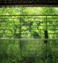 新緑がまぶしい♪当館自慢の露天風呂
