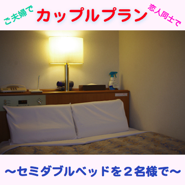 Economy Stay Plan(Semi Double Bed for 2 person)