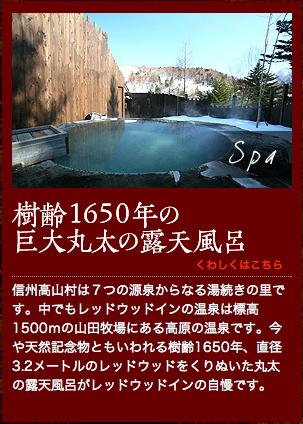 樹齢1650年、直径3.2メートルのレッドウッドをくりぬいた丸太の露天風呂樹齢1650年、直径3.2メートルのレッドウッドをくりぬいた丸太の露天風呂樹齢1650年、直径3.2メートルのレッドウッドをくりぬいた丸太の露天風呂