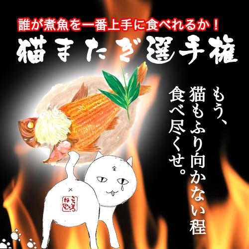 「猫またぎ選手権!開催にゃん♪」煮付けの食べ方&ドヤ顔No,1を決定!!地元伊豆のお魚プロが審査員