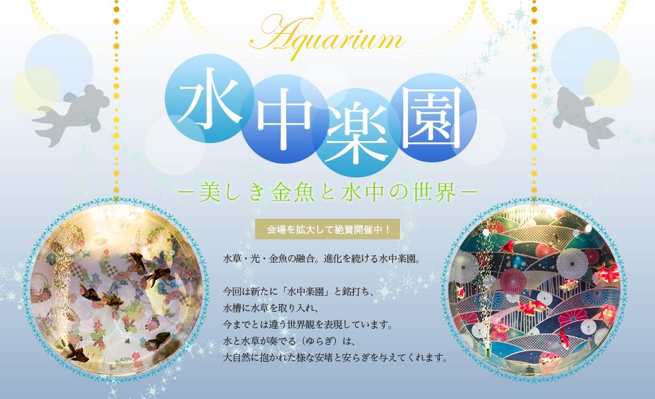 水中楽園01