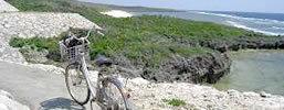 自転車で石垣島の大自然を体感しよう!