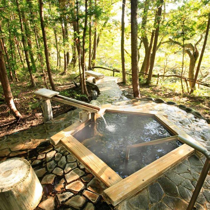温泉山荘 だいこんの花 関連画像 4枚目 楽天トラベル提供