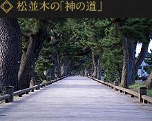 松並木の「神の道」