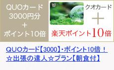 QUOカード3000円分+10倍プラン