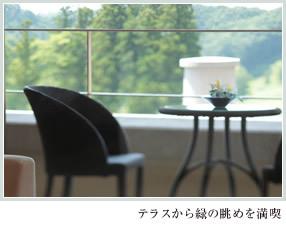 テラスから緑の眺めを満喫