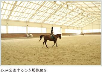 心が交流するひき馬体験を