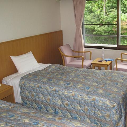 Mountain View Twin Room Non-Smoking
