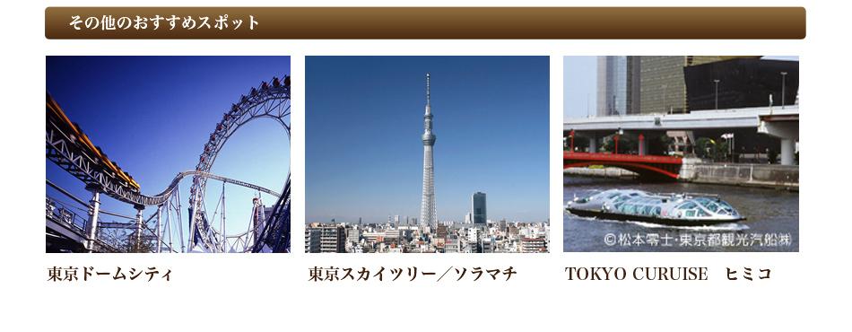 その他のおすすめスポット 東京ドームシティ・東京スカイツリー/ソラマチ・TOKYO CURUISE ヒミコ