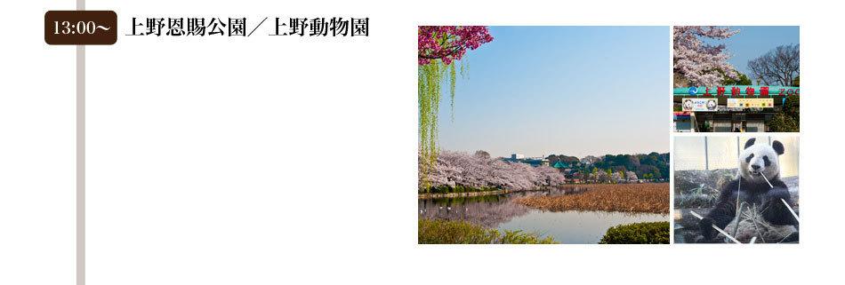 13:00〜上野恩賜公園/上野動物園