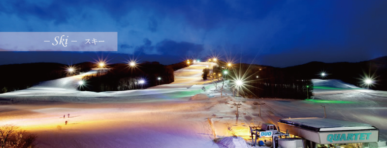 スキートップ画像