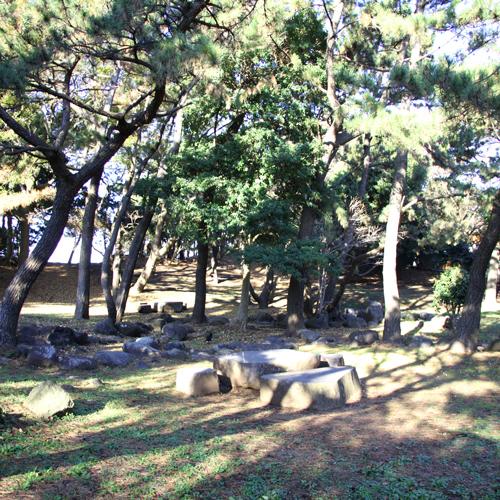 【沼津駅近・海まですぐ】でお得な素泊まり1泊5,400円