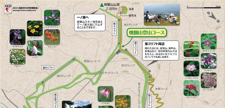 焼額山登山コース