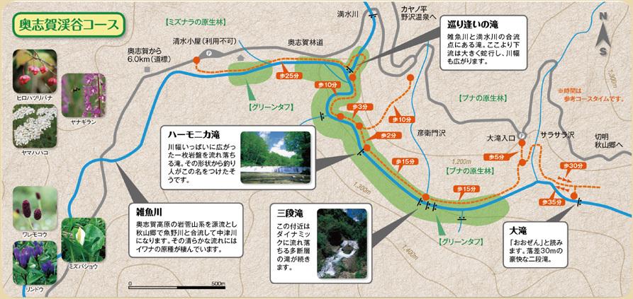 奥志賀渓谷コース