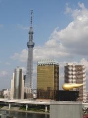 【周辺】東京文化観光センターから見る東京スカイツリー(R)