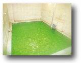 七色アロマ風呂