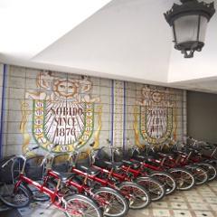 17自転車全体