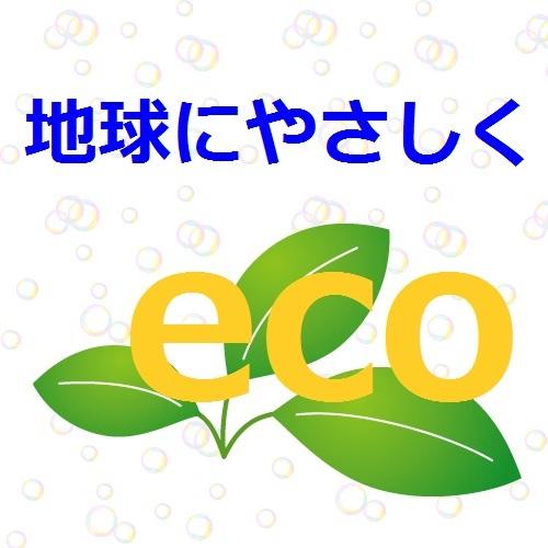 【3連泊以上×素泊り★現金特価】清掃不要!ECOに貢献de地球も財布も(^-^)♪