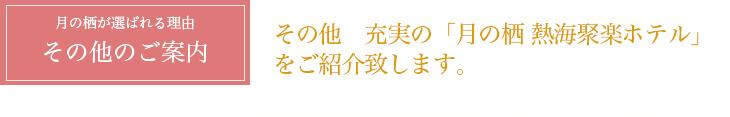 その他info