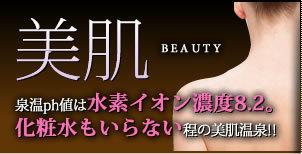 美肌―泉温ph値は水素イオン濃度8.2。化粧水もいらない程の美肌温泉!!