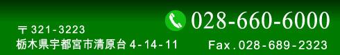 ドーミーハウス 電話028-660-6000