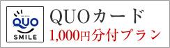 QUOカード1000円分付きプラン
