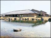 富山県水墨美術館・写真