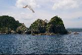 ローソク岩・写真