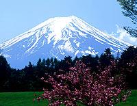 富士山・富士五湖・富士吉田