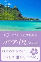 大自然のパワーと人の温かさで癒されるカウアイ島1泊2泊の旅