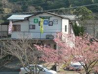 カーサkiki