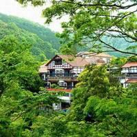 天城湯ヶ島温泉 白壁荘 (巨石と巨木の露天風呂が自慢の宿)の詳細
